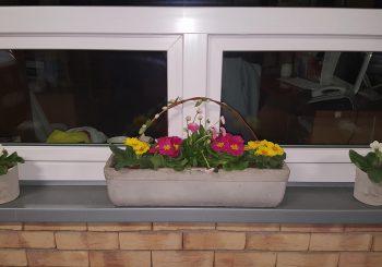 Vítání jara: přijďte si pro květinu a originální květináč